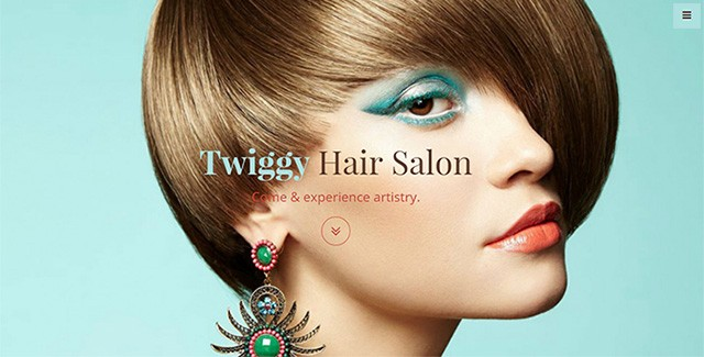 giveaway 3 licenses for twiggy hair salon bootstrap template